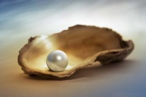 Oyster Pearl, Chandra Mani